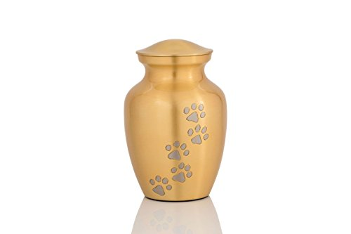 Enshrined Memorials Cremation Urn for Ashes - Cerberus Series Affordable Brass Handcrafted Pets Dogs Cats Funeral Burial Small 6 inch Paw (Urn Home Decor)