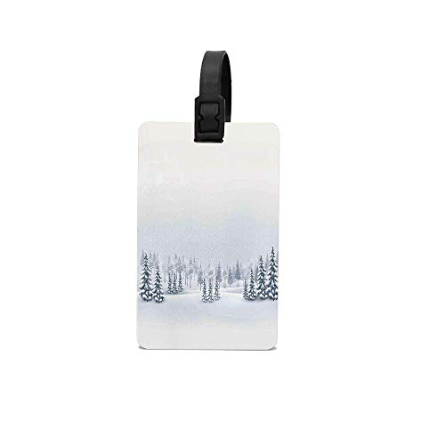 Wbsdfken Winter Decorations Winter Scene in a Park with Trees Foggy Blurry Weather Ice Cold Frost Image Personalized Luggage Tags with Strap, Gifts for Travelers, Custom Luggage Tag