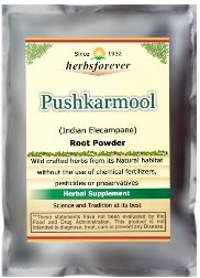 Pushkarmool Powder (Root) (Indian Elecampane) (Ayurvedic Respiratory Care Formulation) (Wild Crafted from natural habitat) 16 Oz, 454 Gms 2x Double Potency by Herbsforever