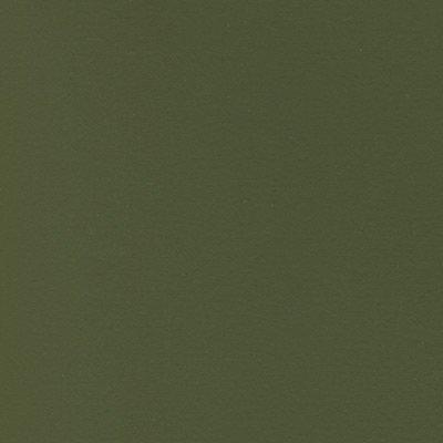Colourfix Pastel Paper (Colourfix Leaf Green Dark Sanded Pastel Paper 12.5x9.75 Inch Sheet)