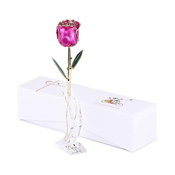 LiuLiugo Gifts for her-24K Gold Rose Made from Real Fresh Long Stem Rose Flower,Best Gift for Valentine's Day, Mother's Day,Christmas Day, Anniversary, Birthday (F.Deep Pink)