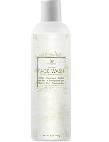 Natural Face Cleanser For Acne Prone Skin