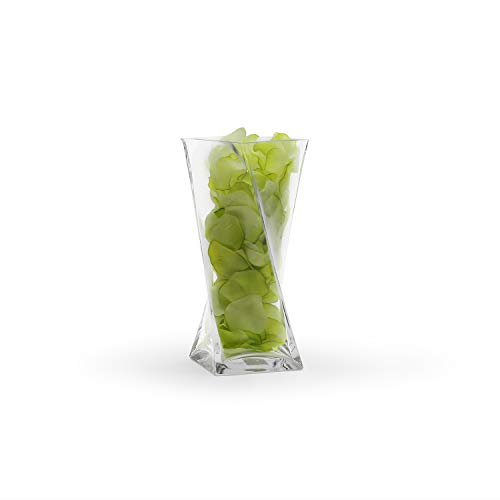 WGV Clear Square Twist Block Glass Vase, 10-Inch (Best Way To Clean Glass Vases)