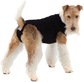 Black Suitical Recovery Suit for Dogs