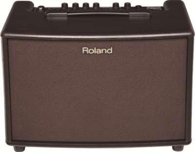 Roland AC-60 - 30W 2x6.5