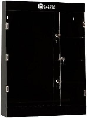 Pro Series cdc97 Deluxe 10-Cue Marca Lucasi Hybrid Taco de Billar Caso de Pantalla con Compartimento para Accesorios: Amazon.es: Deportes y aire libre