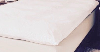 Feather Bed | Pillow Top Mattress Topper | 5 Inch | Free Cover Included | This Luxurious Mattress Pad Is the Perfect Addition to Your Current Mattress. (King) by LuxurestLLC (Image #1)