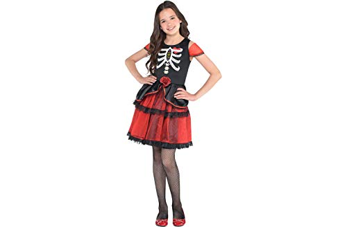 Amscan Day of The Dead Dress - Child Standard ()