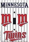 Minnesota Twins Light Switch plate