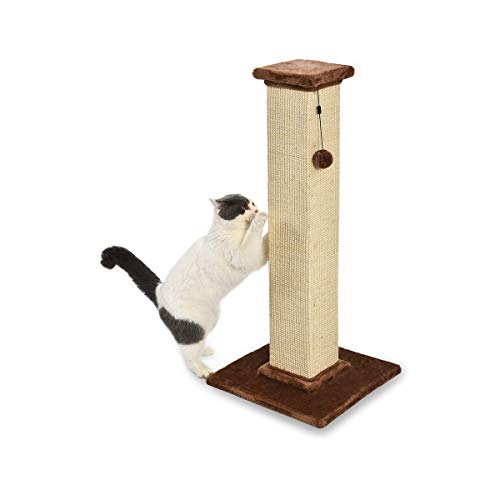 AmazonBasics Large Premium Tall Cat Scratching Post - 16 x 35 x 16 Inches, Brown...
