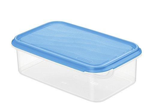 Rotho 1735806644 Frischhaltedose Rondo rechteckig aus Kunststoff PP, BPA-frei, hochwertig, geeignet für Spülmaschine und Gefrierschrank, 1,5 L, circa 24 x 16 x 7,5 cm, transparent / blau