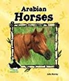 Arabian Horses, Julie Murray, 1577657012