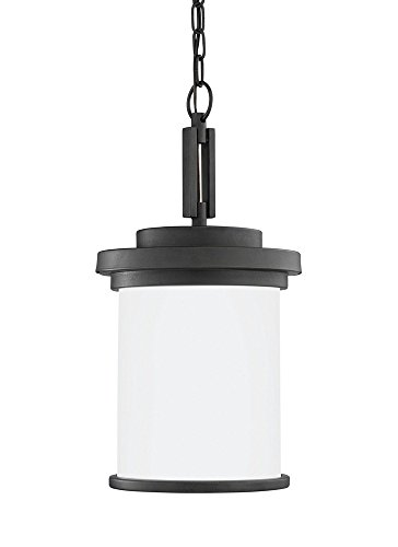 Sea Gull Lighting 60660EN3-185 One Light Outdoor Pendant Forged ()
