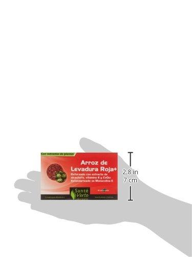 Amazon.com: Santé Verte - Anti Cholestérol - Levure de Riz Rouge - 60 cp: Health & Personal Care