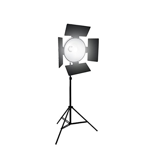 LoadStone Studio Photographic Continuous Output Lighting Kit, Black, White, Silver, Gold (V-PL1104) by LoadStone Studio