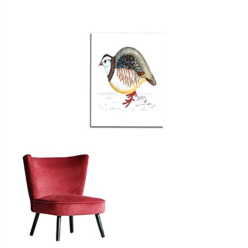 longbuyer Wallpaper Barbary Partridge - Hand Coloured Engraving Mural ()