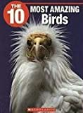 The 10 Most Amazing Birds, Meghan Jenkins, 1554485320