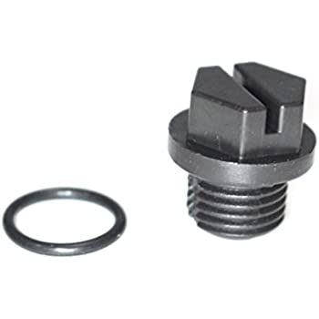 Amazon Com Hayward Spx1700fg Pipe Plug With Gasket