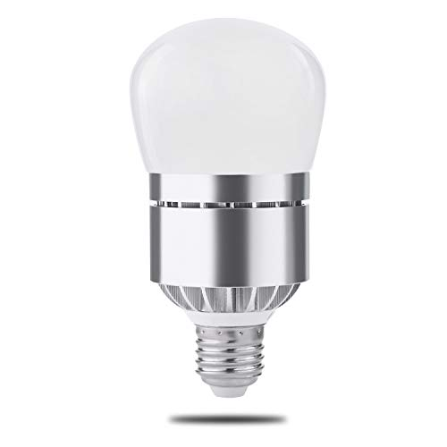 Dusk to Dawn Light Bulb, Photo Sensor Light Bulb with Auto on/off, Indoor / Outdoor Lighting Lamp for Porch, Hallway, Patio, Garage (12 Warm White 1 Pack)