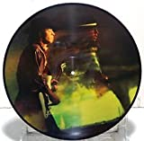 Couldn't Stand The Weather (Picture Disc)