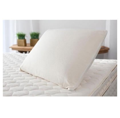 (Savvy Rest Organic Soap Shape Latex Pillow (Standard Full))