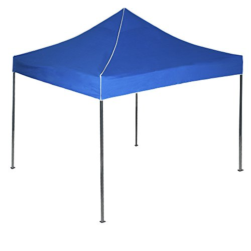 ant Canopy Tent, 10-Feet by 10-Feet, Blue (Blue Canopy Tailgate Tent)