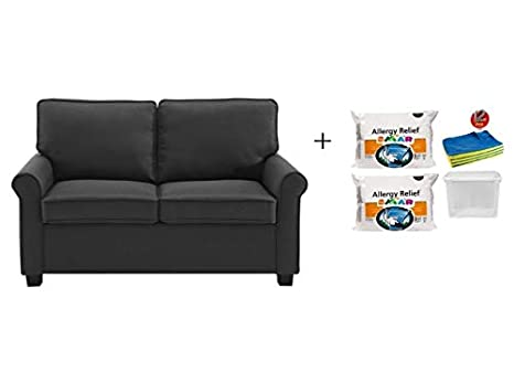 Phenomenal 57 Loveseat Sleeper With Memory Foam Mattress Includes 2 Set Hypoallergenic Polyester Fiberfill Firm Pillow 12 Pcs Cleaning Cloths And 1 Plastic Unemploymentrelief Wooden Chair Designs For Living Room Unemploymentrelieforg