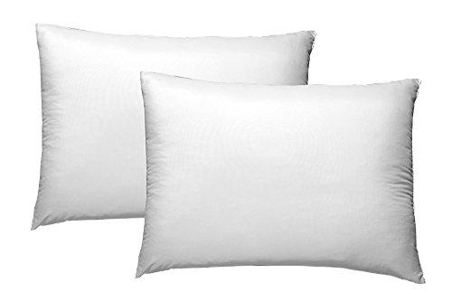Colchas Concord AMCS0014 Almohada Ultrafresh Estándar, 2 x 1 Pieza, Blanco