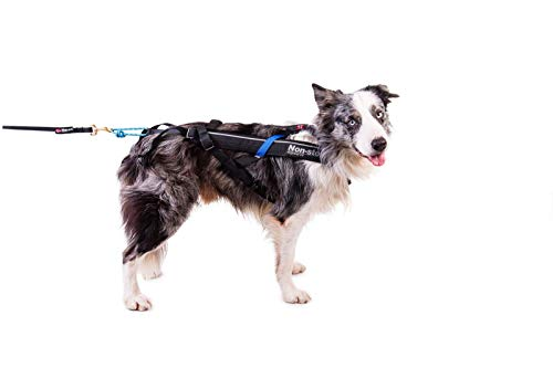 Non-stop dogwear Freemotion Harness (7) by Non-stop dogwear (Image #6)