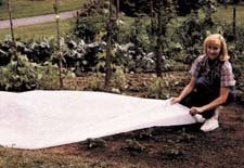 Reemay Garden Blanket - 67\