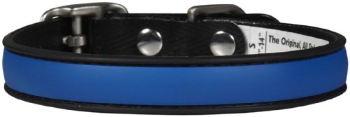 Dublin Dog All Style No Stink Simply Solid Collar - Blue Ribbon - Medium