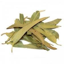 """Résultat de recherche d'images pour """"tisane eucalyptus"""""""