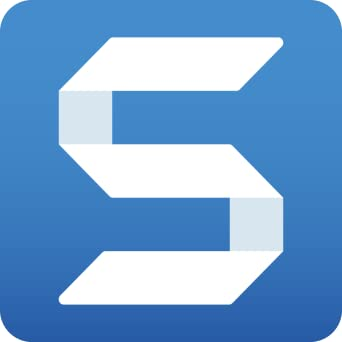 snagit 13 download