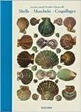 Shells By Antoine-Joseph Dezallier d'Argenville