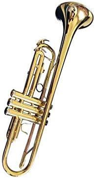 Hongyuantongxun トランペット、プロフェッショナルトランペット、パーフェクトなギフトを再生する新しいBフラットトランペット管楽器ゴールドペイント表面初心者グレーディング,ファイン楽器 (Color : Gold)