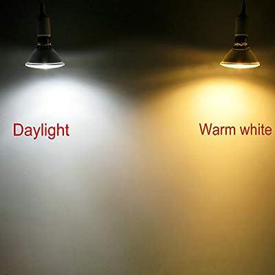PAR38 LED Flood Light Bulb,Full Glass