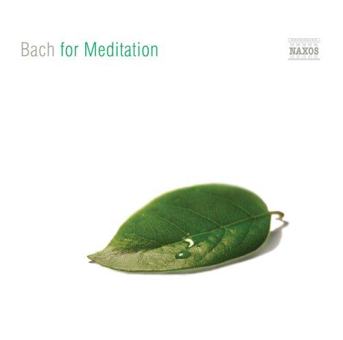 Free For Meditation