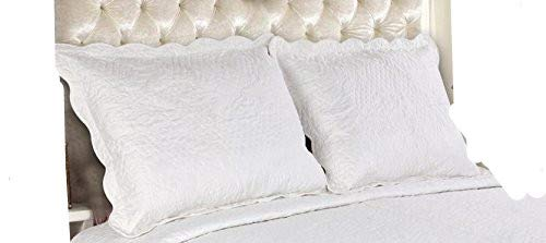 ALL FOR YOU 2-Piece Embroidered Quilted Pillow Shams-Standard Size (White, Off White) by ALL FOR YOU