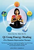qigong energy - Qigong Energy Healing: Five Elements Rejuvenation Therapy, The Personal Program to Heal and Strengthen Your life with Sounds, Diet, Mudras, Timing and the Five Rejuvenation Exercises