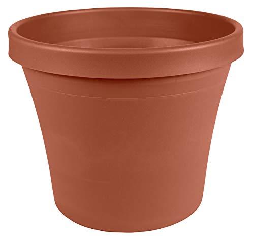 Bloem Terra Plastic Pot