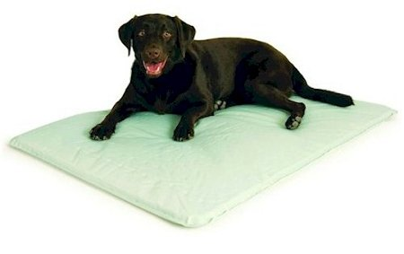 Kh Cool Bed (K&H Pet Products Cool Bed Iii Thermoregulating Pet Bed Large Gray 32 X 44 X 0.5)