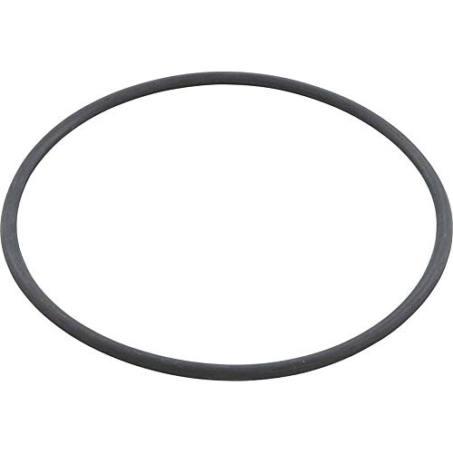 The Speck Pumps 2901141201 V Body Lid O-Ring