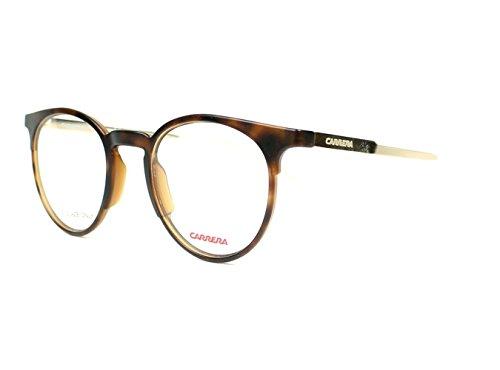 CARRERA - Montures de lunettes - Homme marron matt havana - gold Small