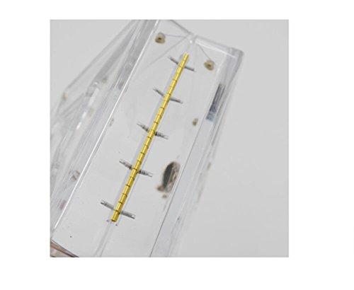 Clutch Acrylique Sacs Main Bouteilles Crossbody Mini Petit Womens Sac D'essence Encens Bandoulière Sac à Bags Transparent Soirée fqZB4