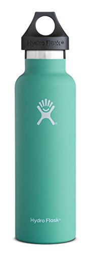 Hydro Flask 24 oz Vacuum Insulated Stainless Steel Water Bottle, Standard Mouth with Loop Cap, Mint