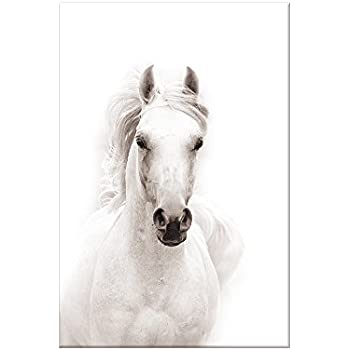 Sumgar black and white wall art for living room contemporary animals pictures of horse paintings on