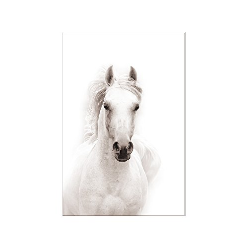 SUMGAR Black and White Wall Art for Living Room Contemporary Animals Pictures of Horse Paintings on Canvas