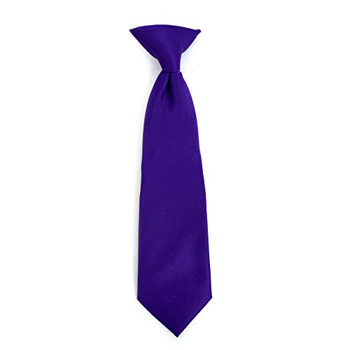 Boy's Solid Clip on Tie (8 inch, Purple)