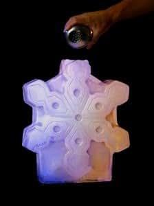 Amazon.com : Snowflake Ice Luge Mold Lugez : Other ...
