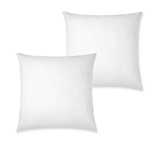 IZO Home Goods Premium Outdoor Anti-mold Water Resistant Hypoallergenic Stuffer Pillow Insert Sham Square Form Polyester, 22 L X 22 W (2 Pack), Standard/White